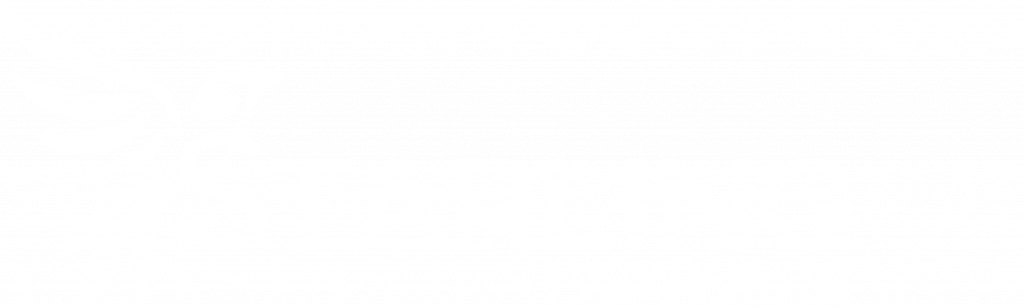 Starling Partners Logo